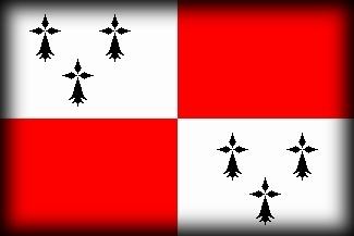 Culture Bretagne, drapeau breton, drapeau du pays de dol, bro zol